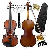 Best Beginner Violins - Aliyes Solid Wood Violin Designed for Beginners/Students Review
