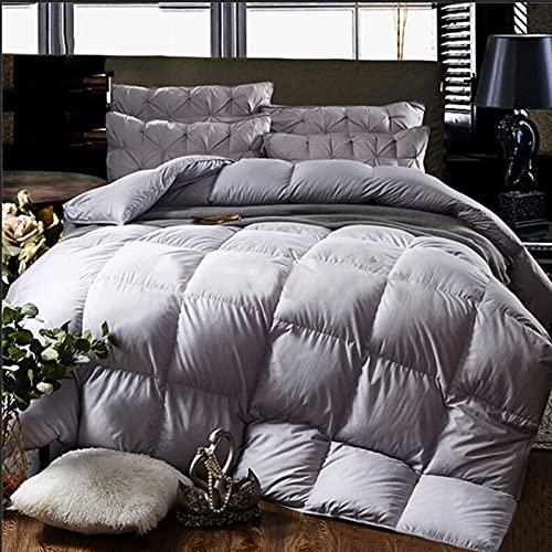 Cheeerrrs Dark Grey Down Alternative Comforter Lightweight...