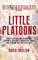 Little Platoons: How a revived One Nation can empower England's forgotten towns and redraw the political map