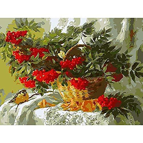 Schilderen op nummer Schilderen op nummer Digitale olie op canvas Kleurplaten Moderne acrylkits Fruitmand Vogel, 40X50Cm