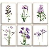 MONOKO® Juego de pósteres para el salón – Juego de imágenes para dormitorio – Cuadros de pared elegantes – Juego de 6 sin marco (flores, lila, lavanda, 6 x A4 (21 x 29,7 cm)