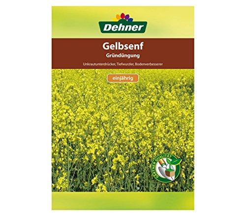 Dehner Saatgut, Gründüngung, Gelbsenf, 500 g, für ca. 100 qm