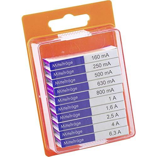 ESKA 12108 Feinsicherung-Sortiment (Ø x L) 5 mm x 20 mm Mittelträge -mT- Inhalt 100 St.