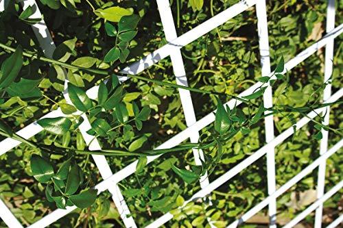 Catral 43060006 - Celosía deco PVC extensible, 1.0 x 300 x 100 cm, color verde