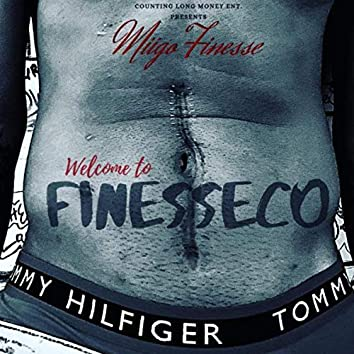 Welcome to Finesseco