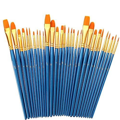 Foeran Paint Brushes Set,30 Pcs Round Pointed Tip Paintbrushes Nylon Hair Artist Acrylic Paint Brushes for Acrylic Oil Watercolor,Facial Art,Nail Art,Miniature Detailing and Rock Painting
