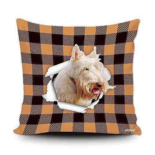 Funda de almohada a cuadros de búfalo naranja y negro con My Love Dog Wheaton Terrier para decoración del hogar, funda de cojín divertida para sofá, dormitorio, 50,8 x 50,8 cm, impresión de doble cara