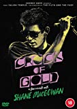 Crock of Gold: A Few Rounds with Shane MacGowan [DVD]