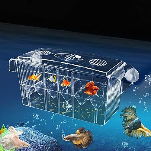Aquarium Ablaichkasten Transparent Zucht Isolation Box Ablaichstation Kunststoff Aufzuchtbehälter Multifunktionale Zucht Inkubator Box Brutkasten Zuchttanks für Garnelen