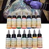 Set de tinta para tatuaje de 30 ml/botella, pigmento de 14 colores, tatuajes de maquillaje permanente, tinta para tintas de arte corporal, suministros de arte de belleza profesional