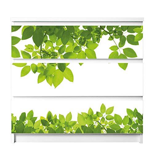 banjado Möbelfolie passend für IKEA Malm Kommode 3 Schubladen | Möbel-Sticker selbstklebend | Aufkleber Tattoo perfekt für Wohnzimmer und Kinderzimmer | Klebefolie Motiv Rahmen Blätter