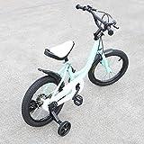 Wangkangyi Bicicleta infantil Jasemy de 16 pulgadas, para niños, con...
