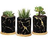 T4u 7,5CM Macetas de Cerámica para Plantas Suculentas con Bandeja de Bambú, Cilindro Negro Conjunto de 3, Tiestos Pequeña para Plantas, Decorativos Interior Maceteros Barro Hogar Mesa Ventana