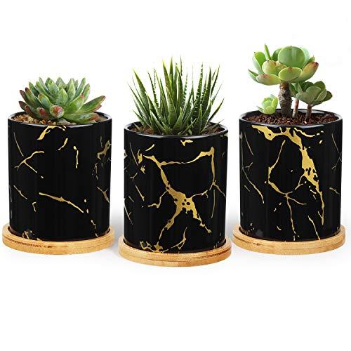 T4U 7,5cm Keramik Sukkulenten Topf mit Untersetzer 3er-Set Schwarz, Klein Mini Sukkulenter Pflanzer mit Goldader, Modern Blumentöpfe für Zimmerpflanzen Kakteen Moos Innenbereich…