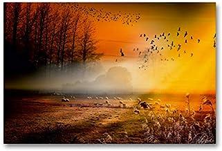 Calvendo Premium Lienzo 90 cm x 60 cm horizontal, pájaros volando en el amanecer sobre el campo de imagen imagen sobre bastidor, imagen lista para colgar en arte de Peter Roder