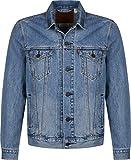 Levi's ® The Trucker veste en jean multicolor