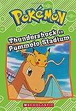 Thundershock in Pummelo Stadium (Pokémon Classic Chapter Book #6)