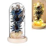 Warmiehomy Campana de Vidrio Decoracion, Kit de Flores Artificiales en la Cúpula de Vidrio con Base de Madera Luces LED, Campana de Cristal Decorativa para la Hogar Boda Cumpleaños Día de la Madre
