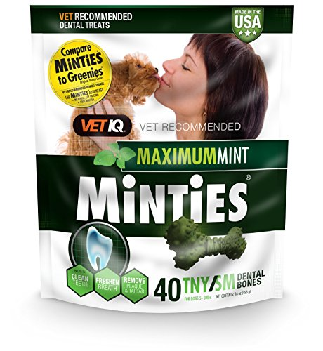 VetIQ Minties Dog Dental Bone Treats, Dental Chews for Dogs, (Perfect for Tiny / Small Dogs under 40...