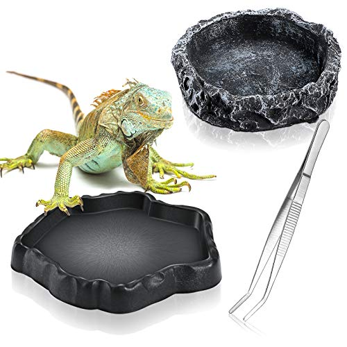 3 Pieces Reptile Water Dish Food Bowl Set Includes 2