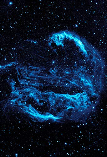 New Horizon Aviation, LLC NASA Cygnus Loop Nebula Space Hi Gloss Poster...