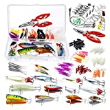 Homealexa 123 PCS Fishing Lures Sea Bass Set Mixed Tackle/Floating Fishing Lures Hook Fishing Accessories Kit Set with Storage Box, Metal Fishing Lures Spinner Baits Fish Treble Hooks Tackle