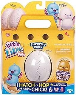Little Live Pets Season 1 Surprise Chick Master