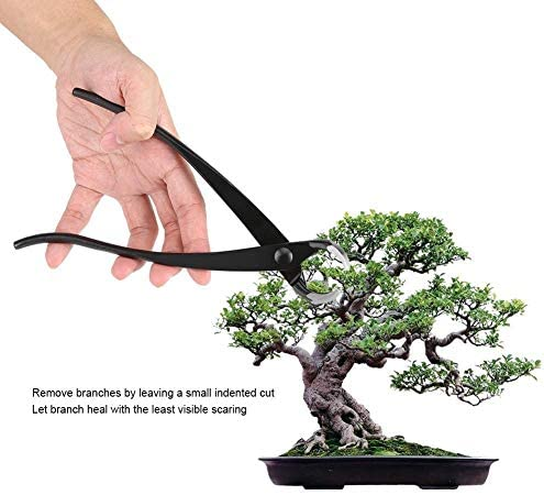 Outils Bonsai - Cutter Direction générale, Direction générale de ronde en alliage de zinc bord de coupe de jardinage Bonsai outil 204mm