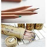 油性色鉛筆  36色セット 子供と大人の塗り絵用 塗り絵 丸缶 シャープナー付 収納便利 ギフトNobita NLH