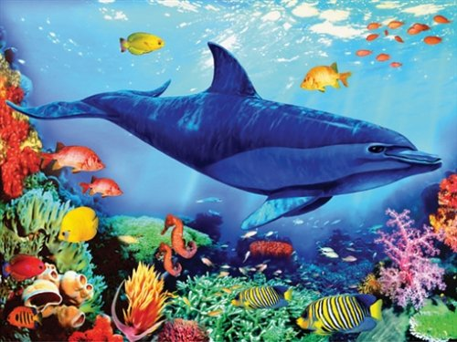 Ravensburger - Leben im Ozean, 250 Teile, Junior Flokati Line (Puzzle)