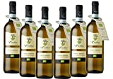 Pinot Grigio DOC Le Carline sin sulfitos añadidos orgánico y vegano