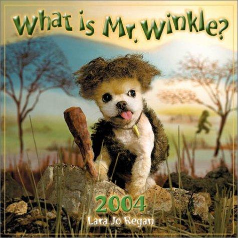 What Is Mr. Winkle? Calendar 2004 (Workman Wall Calendars)