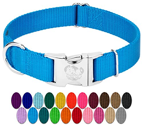 Country Brook Design – Vibrant 26 Color Selection – Premium Nylon Dog Collar with Metal Buckle (Medium, 3/4 Inch Wide, Ice Blue)