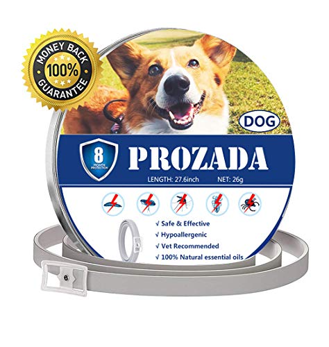 PROZADA Natural Collar Antiparasitario...