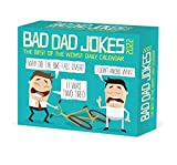 Bad Dad Jokes 2022 Box Calendar - Daily Humor Desktop