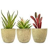 3 plantas suculentas artificiales de tamaño pequeño, suculentas, para escritorio,...
