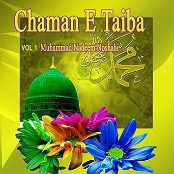 Chaman E Taiba, Vol. 1