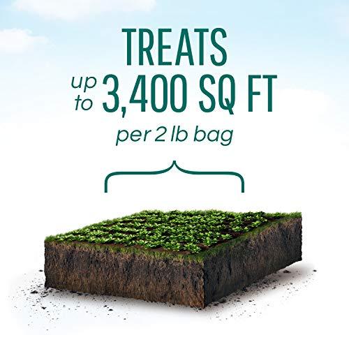 Safer Brand SB125 Slug & Snail Killer - 2 lb,Green