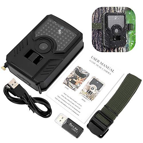 Jadpes Trail Camcorder Nachtsichtkamera, 1080P 12MP wasserdichte Trail Kamera mit Außenkamera Foto Trap Camcorder mit Nachtsichtbewegung für die Überwachung von Wildtieren im Freien