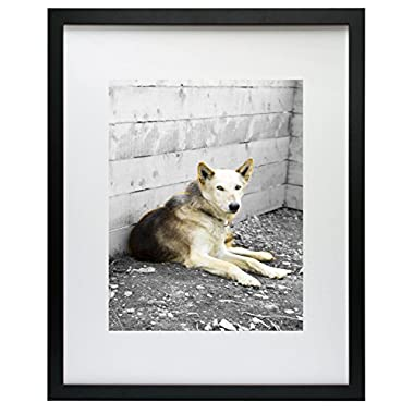 Golden State Art Simple and Stylish Picture Frame with Ivory Color Mat & Real Glass (16x20, Black)