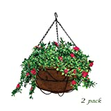 """MTB Garden Hanging Baskets 16"""" S Style with Coco-Liner, Pack of 2,Hanging Planter Plant Hanger Hanging Flower Basket Chain Basket and Plant Growers for Home Balcony Patio Decoration"""