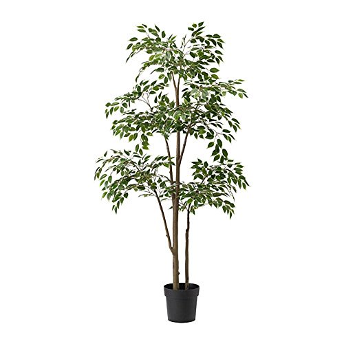 IKEA/イケア FEJKA:人工観葉植物170 cm ベンジャミン(40375172)