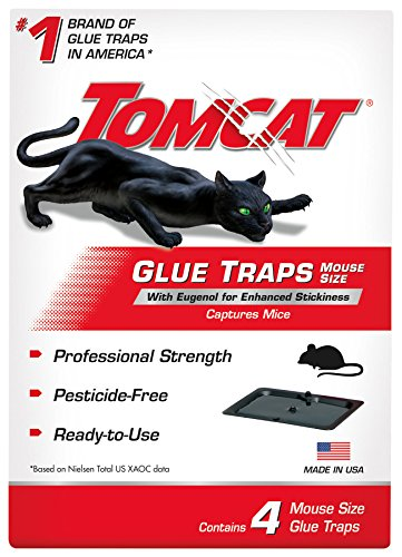 Tomcat 032310 Household Pests, Professional Strength Glue Size with Eugenol for Enhanced Stickiness, Captures Rat an, 4 PK