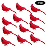 Fgasad - Uccello di Natale con piume artificiali in schiuma, mini uccellini ornamentali per Natale, matrimoni, casa, giardino, feste, accessori