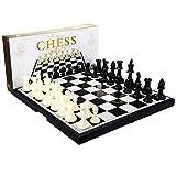 JHSHENGSHI Juguete de ajedrez clásico Ajedrez Blanco y Negro con Tablero de ajedrez magnético de plástico Ajedrez portátil Plegable para Entrenamiento Cerebral