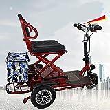 Sunzy Véhicule pour Senior - Tricycle électrique - Voiture électriqu,Scooter électrique Trois Tours 20KM / H - Portant 270LP - Kilométrage 60KM