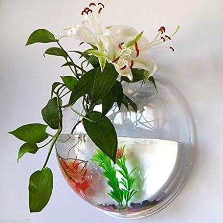 Electrodose 2 Size Pot Plant Wall Mounted Hanging Aquarium Transparent Acrylic Fish Bowl Tank Fer Vase Home Decoration (Clear, 10 x 10 cm)