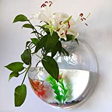 Electrodose Wall Mounted Hanging Pot Fer Plant Acrylic Transparent Aquarium Fish Bowl Vase Home Decoration (Clear, 15x15 cm, 2 Size)