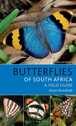 Field Guide to Butterflies of South Africa: Second Edition