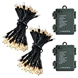 51SB FO3G6L. SL160  - Battery Operated Outdoor Christmas Light